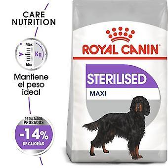Royal Canin  Maxi Sterilised Adult Sterilized Dog Food Large Size