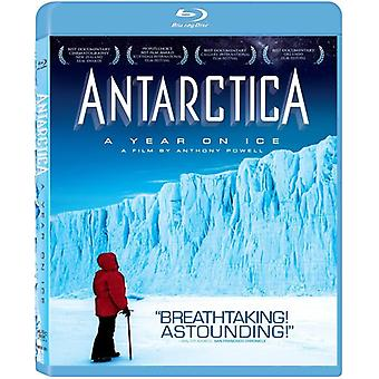 Antarctica: A Year on Ice [BLU-RAY] USA import