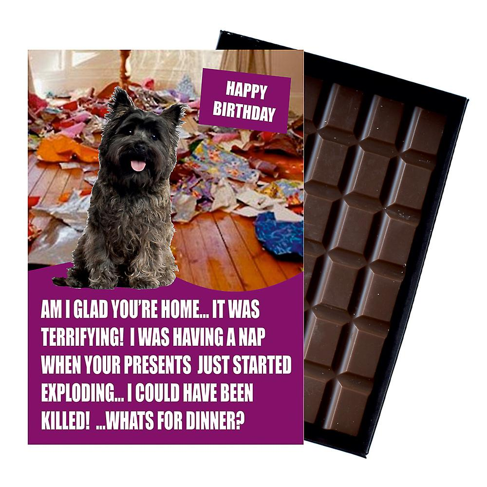 Cairn Terrier Funny Birthday Gifts For Dog Lover Boxed Chocolate Greeting Card Present
