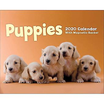 Otter House Mini Calendar Magnetic Backer Puppies 2020