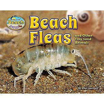 Beach Fleas and Other Tiny Sand Animals by Ellen Lawrence - 978168402