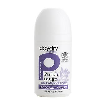 Moisturizing deodorant with probiotic active ingredients Purple Sage 50 ml