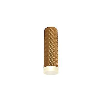 Iluminación luminosa - 1 luz 20cm superficie montada techo GU10, oro champán, anillo de acrílico