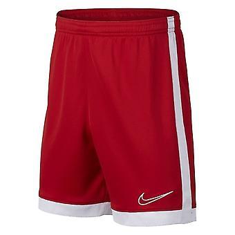 Nike Dry Academy AO0771657 jalkapallo kesäpojan housut