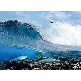 Taustakuva seinämaalaus Ocean Wave Swirl (400x260 cm)