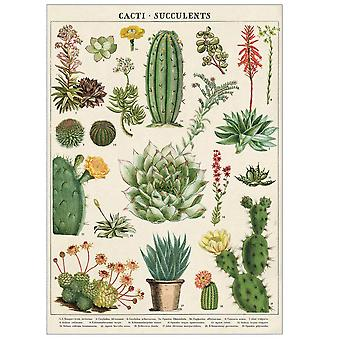 Cavallini Cacti and Succulents Wrapping Paper / Poster