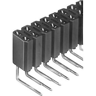 Fischer Elektronik Socket nauhat