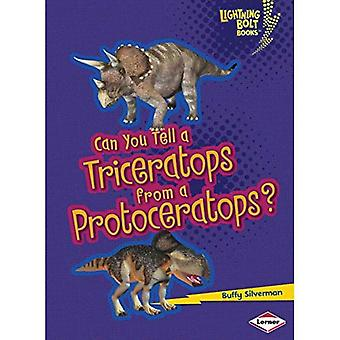 Tu peux un Triceratops d'un Protoceratops?