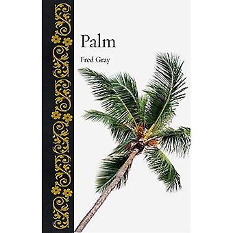 Palma (botanico)