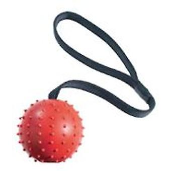 Classic For Pets Pimple Ball & Rope 70mm (Dogs , Toys & Sport , Balls)