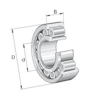 INA RSL183012-A-XL Cylindrical Roller Bearing