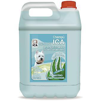 Ica Conditioning Shampoo 5Lts Aloe V