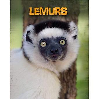 Lemurer (lever inne vill: primater)