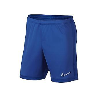 Nike Dry Academy AJ9994480 football all year men trousers