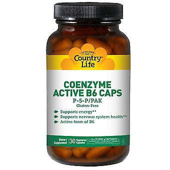 Country Life, Coenzyme Active B6 Caps, P-5-P/PAK, 30 Vegetarian Capsules