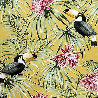 Toucan Ocker Hintergrundbilder