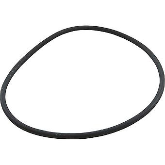 Speck Pumps 2921141210 137 x 5MM Lid O-Ring