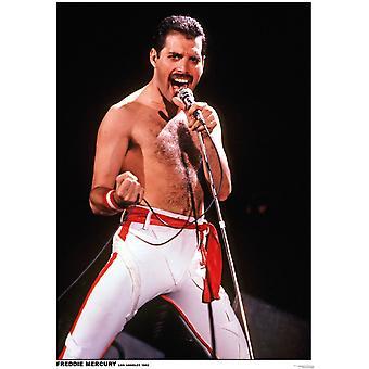 Freddie Mercury LA Queen - Los Angeles 1982 Poster Poster Print