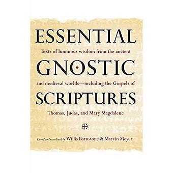 Écritures gnostiques essentielles