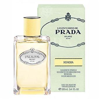 Les Infusions Mimosa by Prada for Women 3.4oz Eau De Parfum Spray