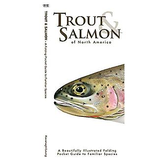 Trout & Salmon: A Folding Pocket Guide to North American Salmonids (Pocket Naturalist Guide Series)