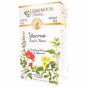 Celebration Herbals Organic Yarrow Leaf & Flower Tea, 24 Bags