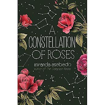 Een constellatie van Rozen