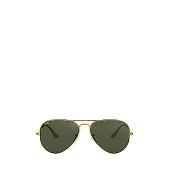راي بان RB3025 أريستا النظارات الشمسية للجنسين