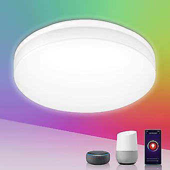 Lepro Smart LED Ceiling Light 15W 1250lm, App or Voice Control, White and Colour Ambiance, IP54 Wate
