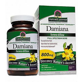 Nature's Answer Damiana Leaf, 90 Sgel