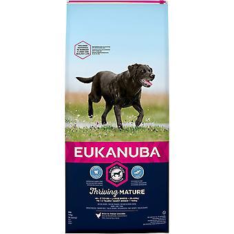 Eukanuba Bloeiende Volwassen Grote Ras Kip - 12kg