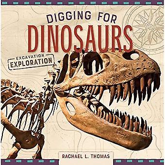 Excavación de dinosaurios (excavación de exploración)
