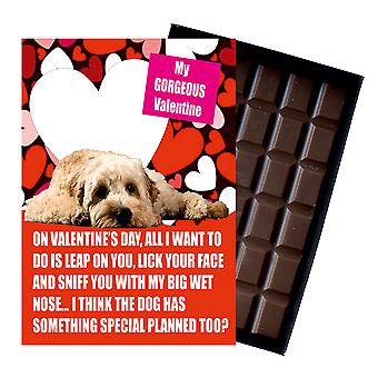 Novelty Belgian Chocolate Dog Lover Valentines Day Gift Cockapoo Greeting Card