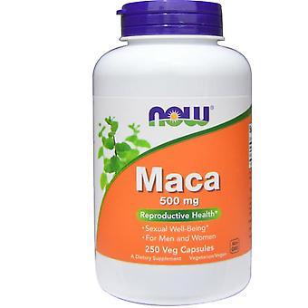 Maca 500 mg - 250 vegetarische Kapseln - Jetzt Lebensmittel