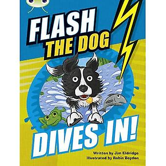 BC Brown B/3B Flash the Dog Dives In! (BUG CLUB)