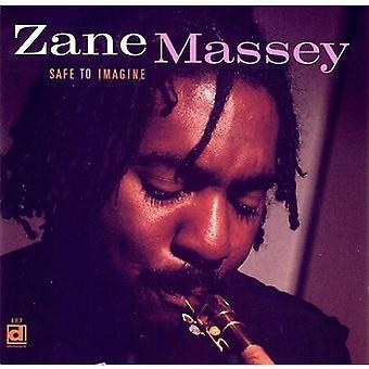 Zane Massey - Safe to Imagine [CD] USA import