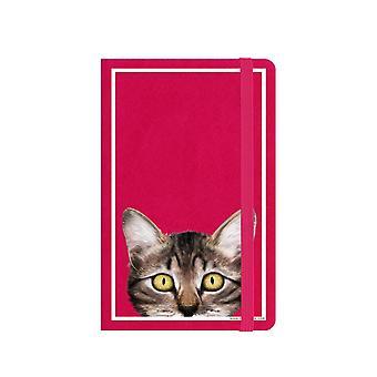 Inquisitive Creatures Kitten A6 Notebook