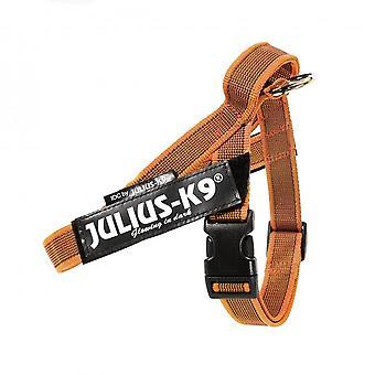 Julius K9 IDC Harness Color & Grey Tape (Hunde , Für den Spaziergang , Geschirr)