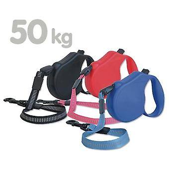 Arquivet Petral Nylon Embroidery 65/20 (Dogs , Collars, Leads and Harnesses , Leads)