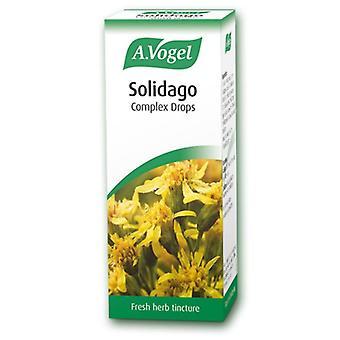 A.Vogel Solidago Komplex 50ml (40418)