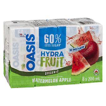 Oasis Tetra Hydra Fruit Fusion Juice-( 200 Ml X 32 Cans )