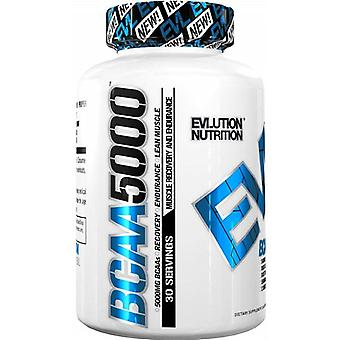 Evlution Nutrition Bcaa 5000 with 240 Capsules