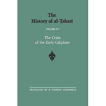 Al-Tabarin historia: v. 15: Vol 15 (SUNY Series in Near Eastern Studies)