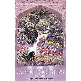In the Mystic Footsteps of Saints, Vol. 2 (Mystic Footsteps of Saints)