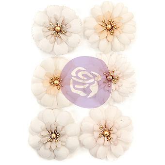 Prima Markkinointi Melko vaaleat kukat vaaleat terälehtiä