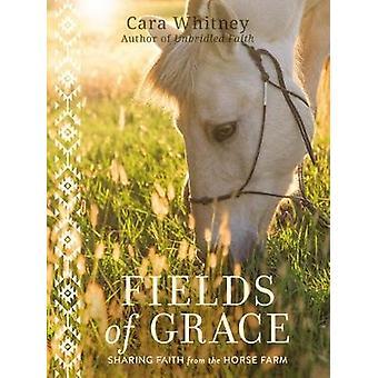 Fields of Grace Sharing Faith from the Horse Farm