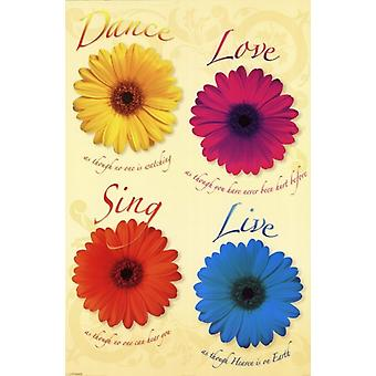 Gänseblümchen - Tanz Liebe singen Live Plakat Poster drucken