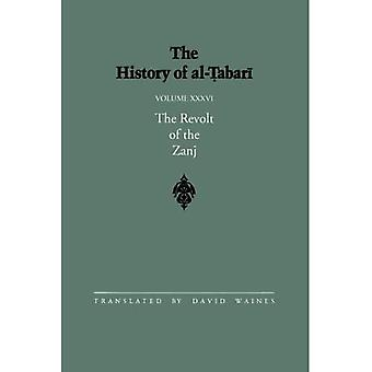 Al-Tabarin historia: v. 36: Vol 36 (SUNY Series in Near Eastern Studies)