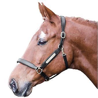 Aviemore Naamplaatje Leather Horse Headcollar