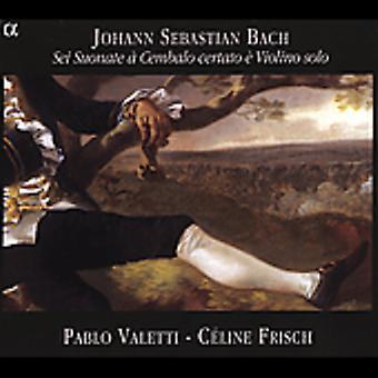 JS バッハ - バッハ: Sei Suonate チェンバロ Certato ヴィオリーノ ・ ソロ [CD] USA 輸入